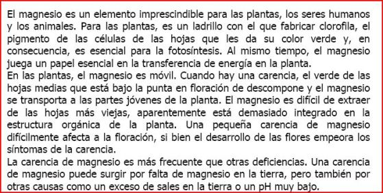 magnesio-texto-1