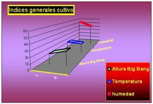 general-grafico