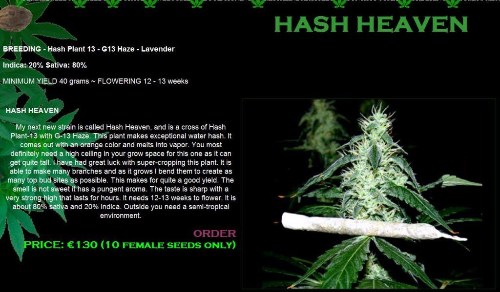 Hash Heaven